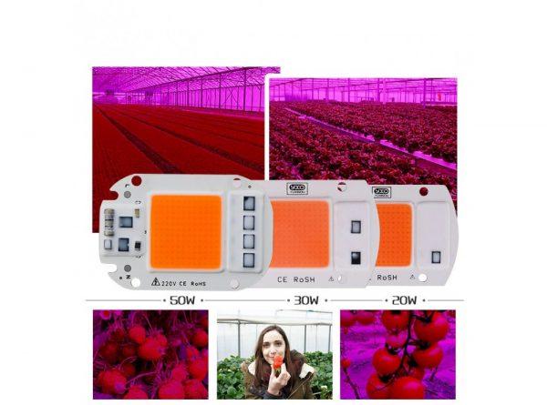 led cob مخصوص رشد گیاه 50w 220v با درایور داخلی 4 ارکید استور